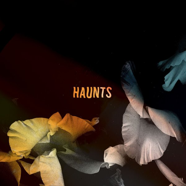 Bearcubs (Haunts / Packshot)